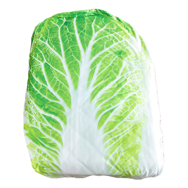 Creative Cabbage and Pet Blanket 1