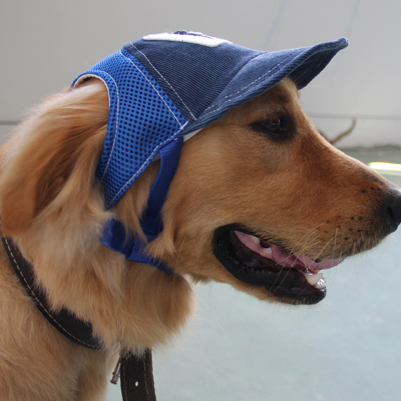 3D Breathable Mesh Pet Hat for Dog