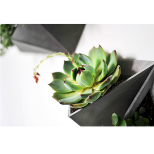 Image 2 - Triângulo forma de parede pendurado cimento flowerpot silicone molde de silicone pote de concreto moldes para decorações de casa s9035