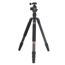 TORUI W284C+H36 Carbon Fibre professional Tripod With Ball head Portable Travel DSLR Camera detachable Max Load to 10Kg