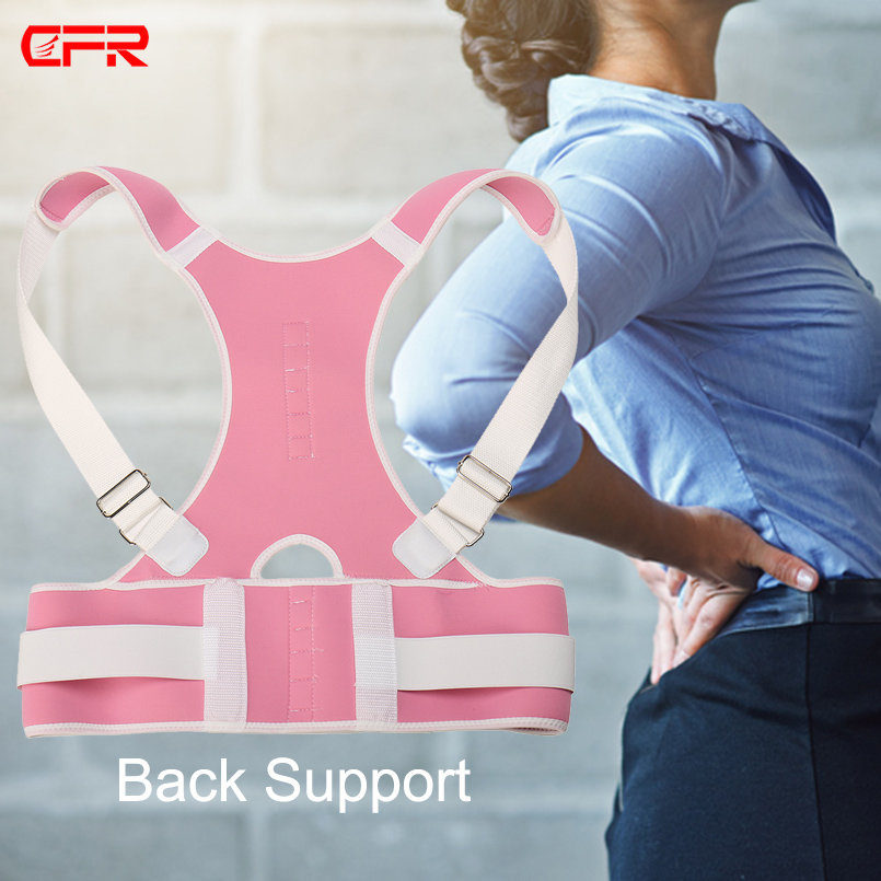 back support (6)