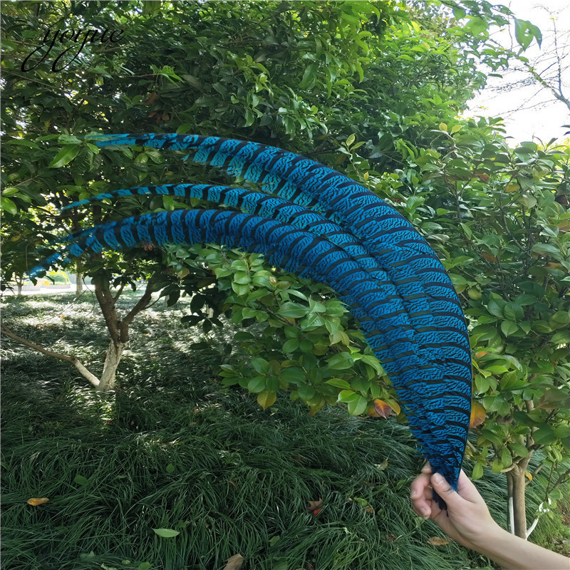 20pcs 36-40inche/90-100cm Natural Lady Amherst Pheasant Feather Black pheasant feathers for carnival party costumes decoration