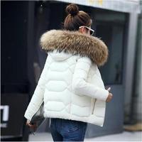 2018 New Winter Jacket Women Faux Fur Down Wadded Jacket Female Cotton Padded Jackets Thickening Women Winter Coat