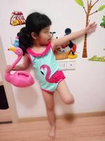 Frete grátis, Pássaro de Fogo Em Forma de Decoração Para Casa Decoração de Flamingos Brinquedos das Crianças Regador