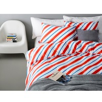 Twill Brief Style Duvet Cover Set Without Comforter 100% Cotton Stripes Autumn Winter Bedding Set 4PCS Reactive Printing Thicken
