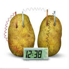 Potato Clock Novel Green Science Project Experiment Kit funny educational DIY material for children kids Lab Home School Toy(China)