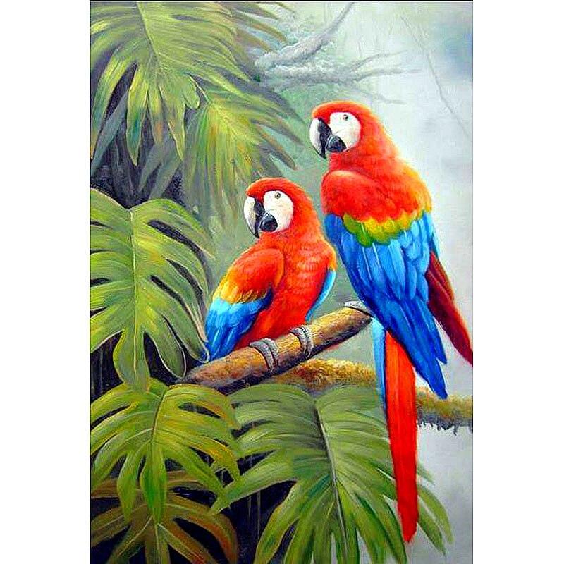 такую рисунок попугаев как живые стоит принимать решение
