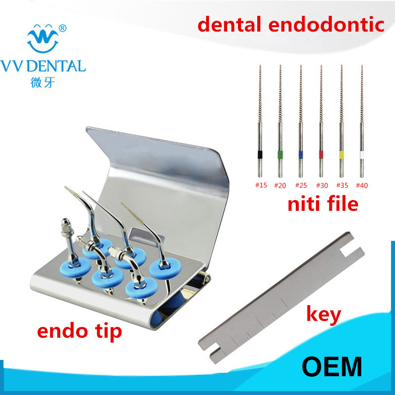 Dental Ultrasonic Endodontic Tips Endo Tip Teeth Whitening Kit Endodontic Root Canal Files For EMS WOODPECKER Cleaning Machine