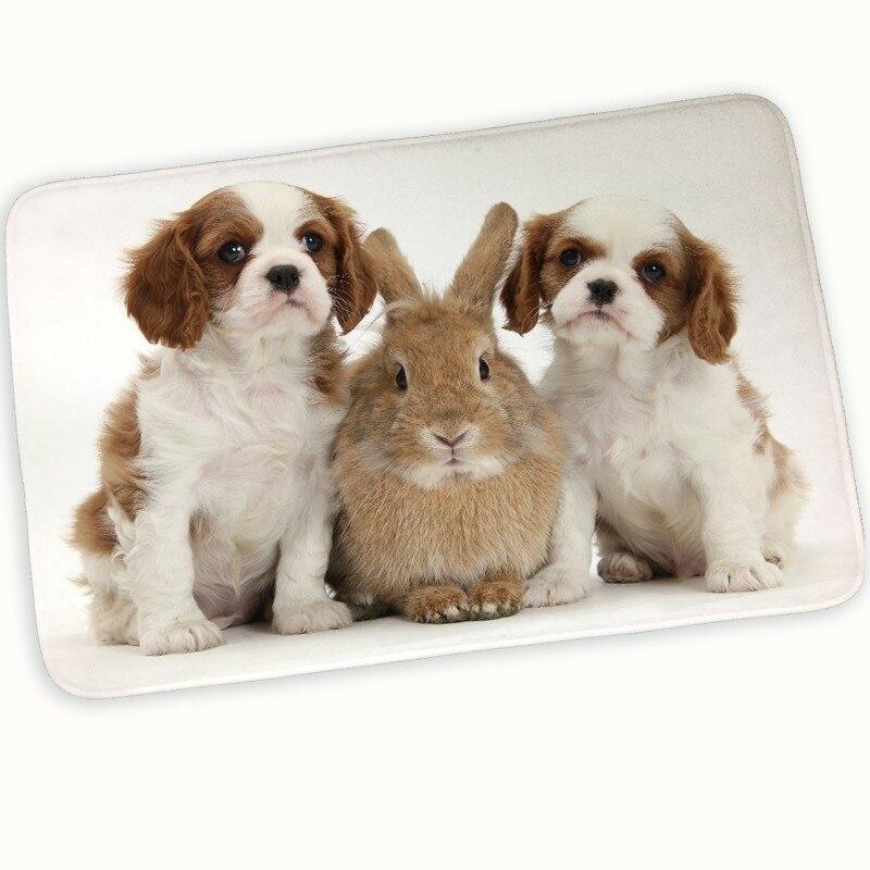 Dog Ate Corner Of Rug: Quality Printed Cute Dogs Doormat Floor Mat Hallway Modern