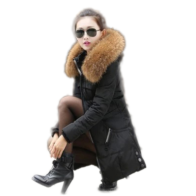 Online Get Cheap Long Puffer Coat Women -Aliexpress.com | Alibaba ...