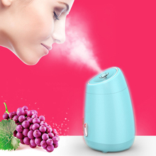 Fruit Vegetable Facial Steamer Household Spa Beauty Instrument Face Whitening Humidification Cleansing Hot Mist Steam Sprayer