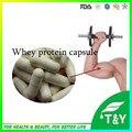 Suplemento de proteína de soro de leite a granel puro cápsulas de 500 mg * 200 pcs/lote em direto do fabricante