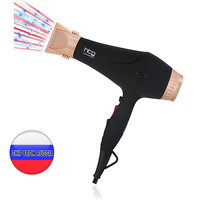 HTG Professional Hair Dryer Blow Dryer Salons USE Keratin Ionic Infrared Generator Lightweight Ship From RUSSIA