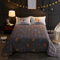 2018 Colorful Feathers Quilting Bedsheet Print Microfiber Polyester Stitching Bedlinens Coverlet 3pc Bedspread Set Pillowcases