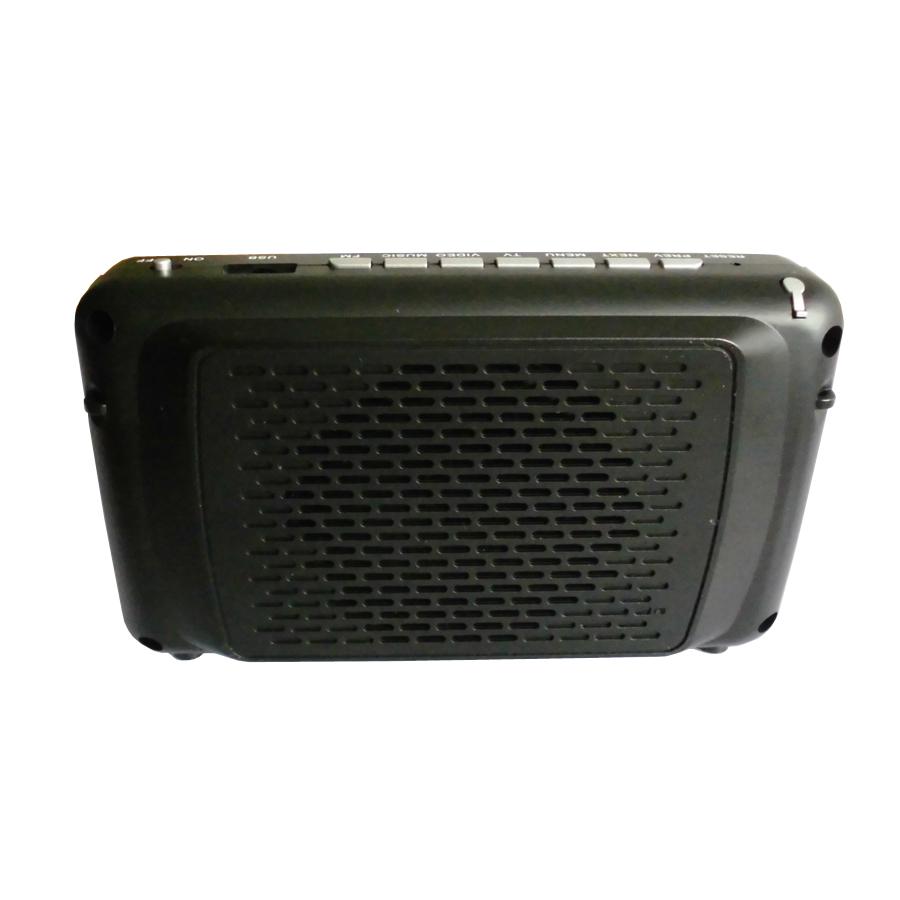 Digital ISDB T Mini Handheld TV with 4.3 inch LCD Screen (5)