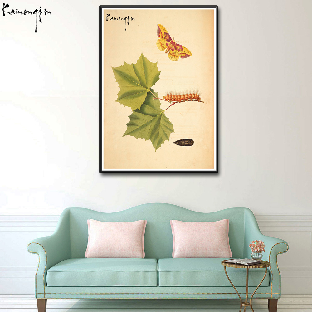 Colorful Butterfly Green Leaves Centipede Insect Nature Classic Art ...