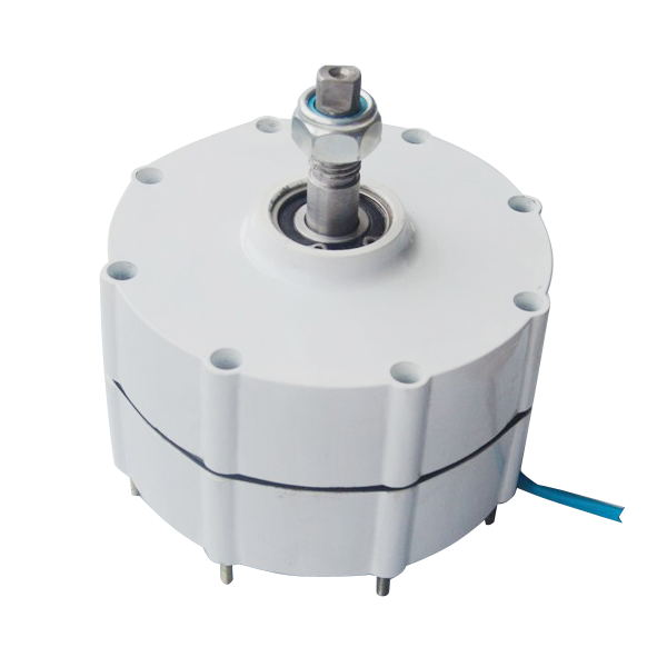 DC 600W 12V 24V 48V PMG Permanent Magnet Generator with gear 40w 50w hand cranked generator dc small generator 12v 24v permanent magnet dc motor dual use