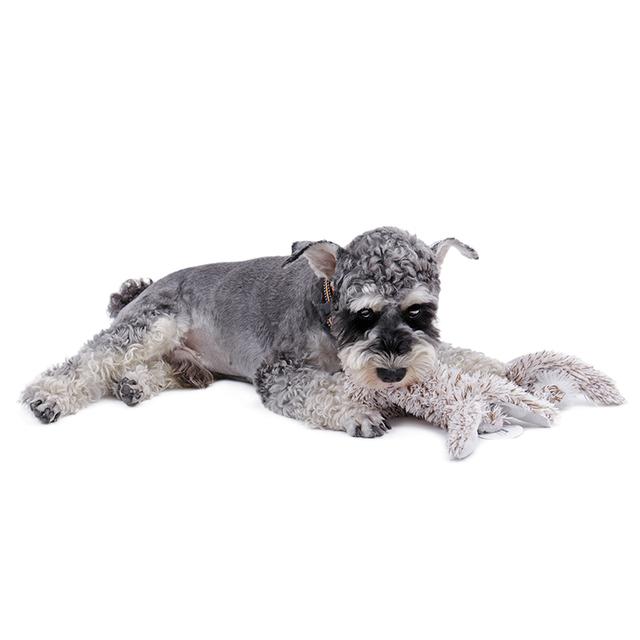 Dog's Plush Chew Toy