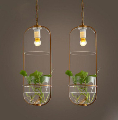 Modern minimalist garden ecological restaurant creative Cafe bedside water glass pendant lights plants hanging lamps
