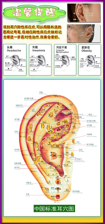 Kulak refleksoloji noktaları