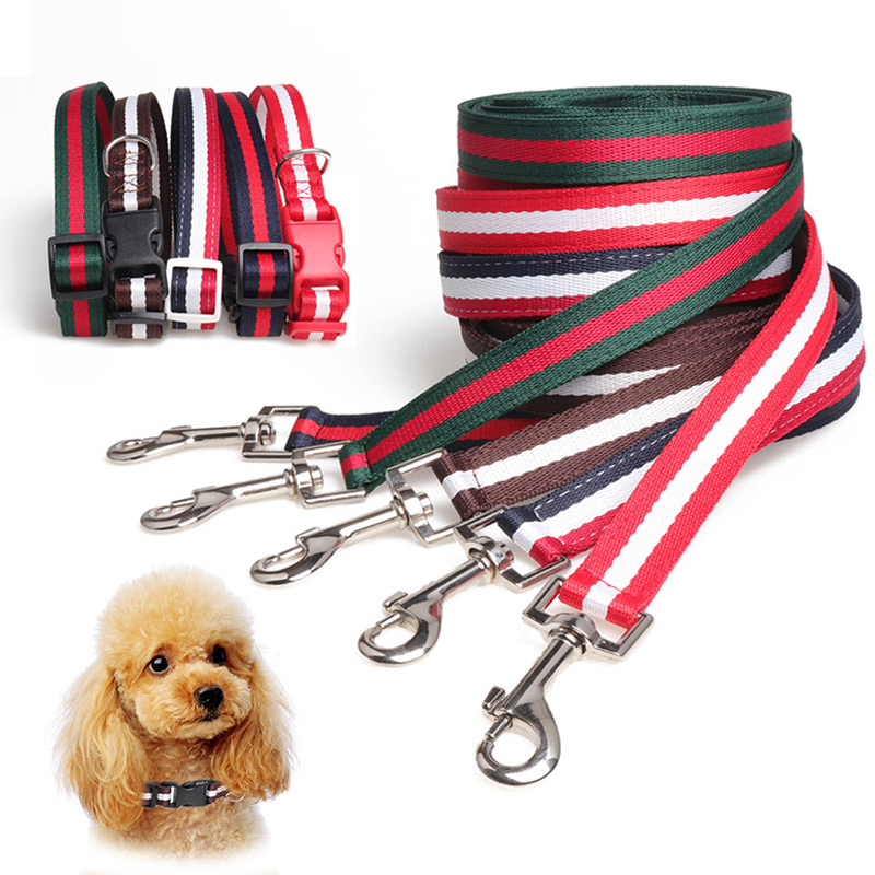 Dog or Cat Leash Collar Set 50 Length Leash 10 20 Adjustable Collar Pet Outdoor Walk