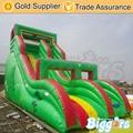 Inflatable Biggors Бесплатная Доставка По Море Надувной Горки, Надувные Оборудования