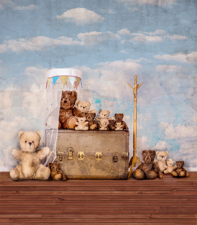 Kate 200x300cm  Photography Backdrop Bear Blue Sky Wood Children Background  Newborn Backdrops for Photography blue sky чаша северный олень