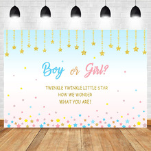 NeoBack Gender Reveal Baby Shower Backdrop Twinkle Little Star Surprise Background Photography