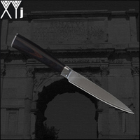 XYJ Brand VG10 Damascus Knives 5 Inch Utility Knife Color Wood Handle Kitchen Knives 71 Layers