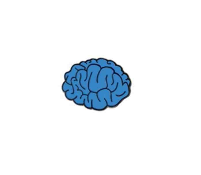 Smjel Baru Otak Lucu Mata Hati Gigi Bros Kerah Pin Punk Biologi Pakaian Lencana Jaket Perhiasan Dokter Perawat Hadiah BP073