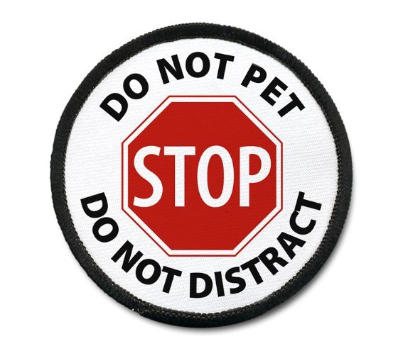 ab0c88477c9 Service Dog Stop Do Not Pet Do Not Distract Pet Dog Patch Guide Animal  Medical Assistance patch badge