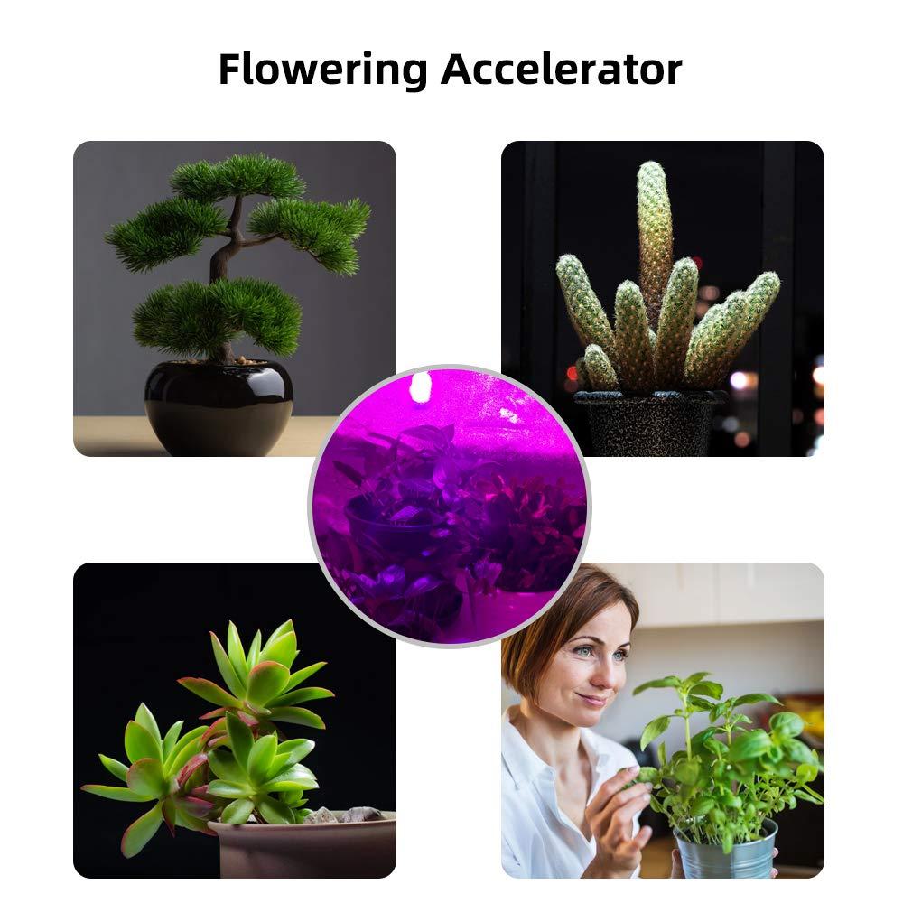 LED Grow Light Bulb 2