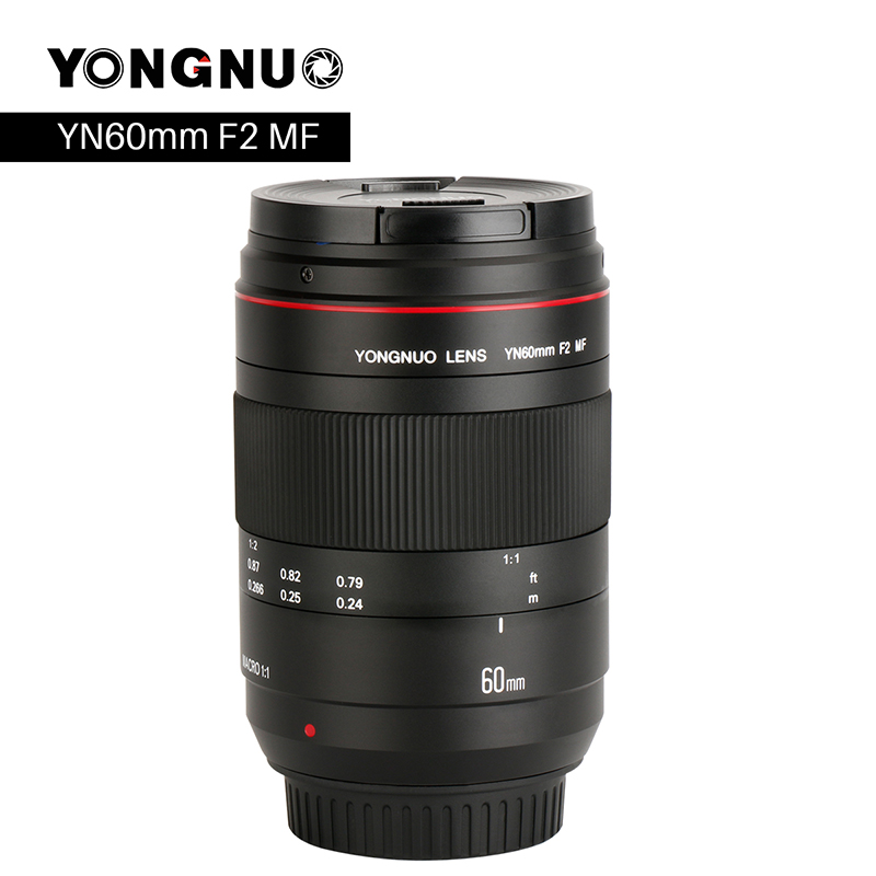YONGNUO YN60mm Macro Lens 0.234m 1:1 F2 Large Aperture MF Manual Focus for Canon EOS 80D 5D2 5D3 700D DSLR Cameras Macro Lens