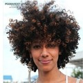 Synthetic hair kinky curly wigs black women wigs for african americans short curly wigs blonde highlights cheap kinky afro wigs