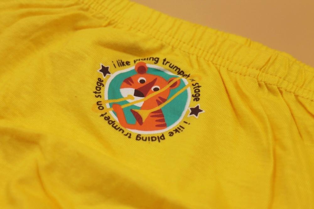 2-12T panties Girl cotton underwear  color girls underwear infantil children briefs for girls boys underwear ZS8563 1