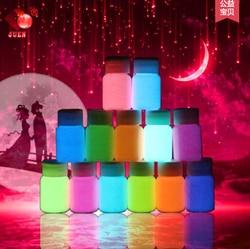20g 13 couleurs à base d'eau liquide revêtement lumineux super lumineux Fluorescent corps/visage peinture lumineuse acrylique peintures brillent dans l'obscurité