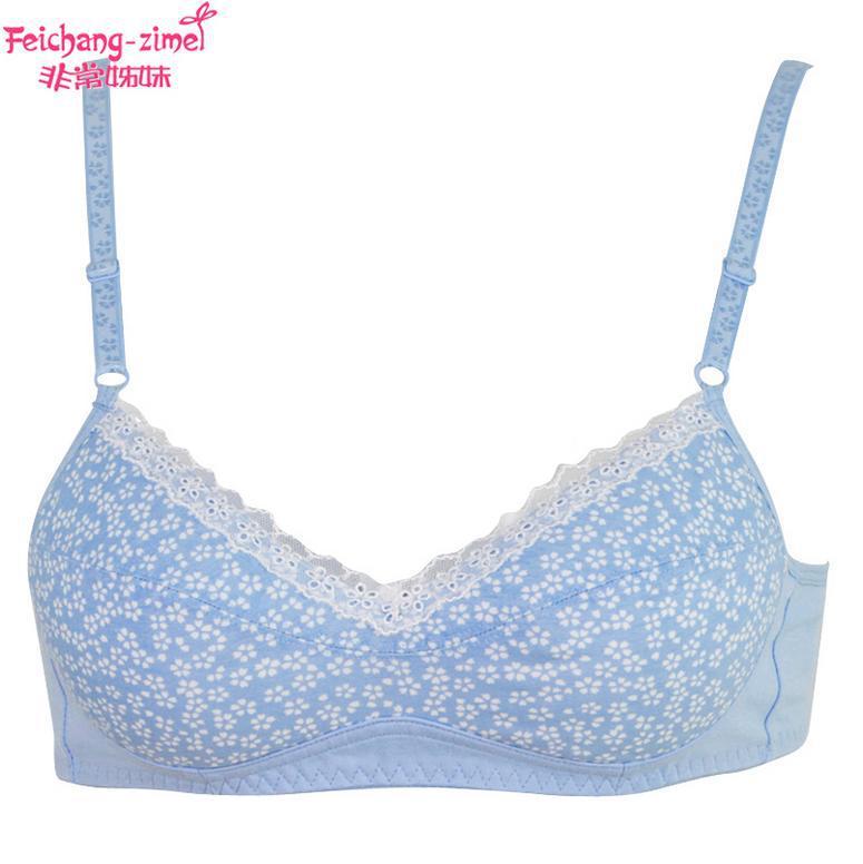 Free Shipping 2016 Feichangzimei Teenage Girl Underwear
