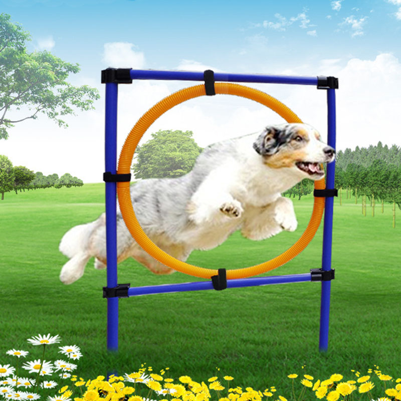 HSWLL Pet Supplies Dog Jumping Ring Jumping Training Sensitive Jumper Dog Outdoor Sports Equipment