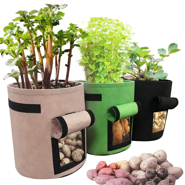 Behogar 3PCS Assorted Colors 7 Gallon Vegetables Potato