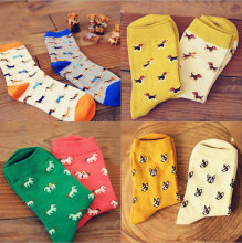 Colorful Dog Socks