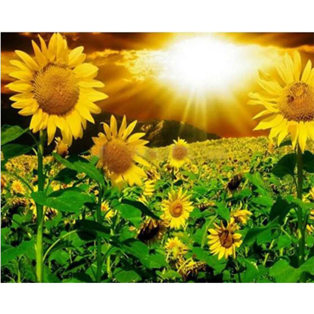 5D DIY diamond embroidery square diamond full diamond embroidery sunflower Painting home decoration gifts mural Y884
