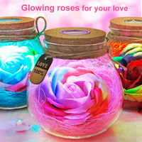 LED Colorful Flower Night Light RGB Creative Romantic Bottle Immortalized Rose Bulb Valentine S Day Christmas