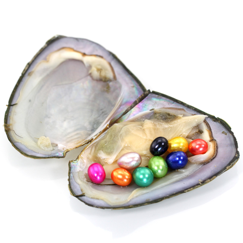Mussel Shell Freshwater Oyster Wish 9 Pearls 20 colors 7-8MM 9 beautiful Pearl Oyster With One Pearls Vacuum Pack Inside FO047