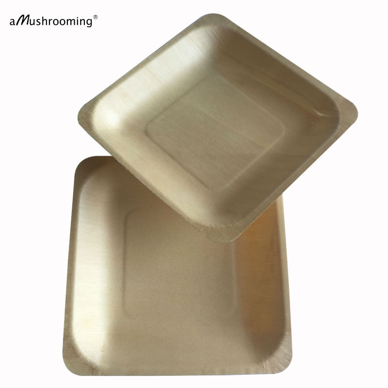 (25 pieces/lot) Biodegradable Square Disposable Wooden Plate 14cm Party Plates Tableware Wedding Restaurant Picnic Birthday-in Disposable Party Tableware ...  sc 1 st  AliExpress.com & 25 pieces/lot) Biodegradable Square Disposable Wooden Plate 14cm ...