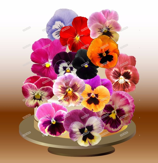 24 pink pansies flower edible cake topper wafer rice paper pancy 24 pink pansies flower edible cake topper wafer rice paper pancy cupcake topper wedding baby shower mightylinksfo