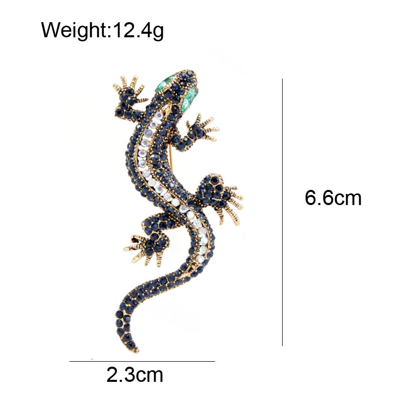 lizard 11