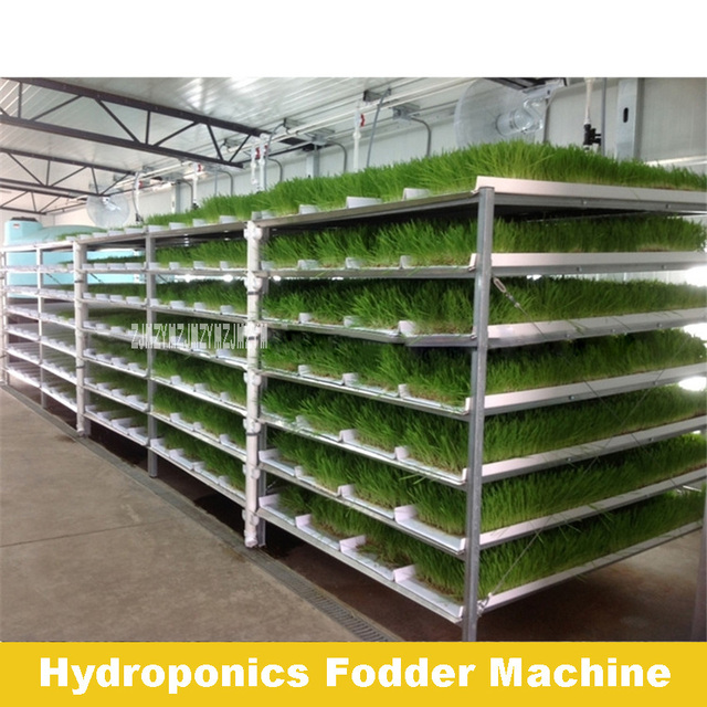 Good Quality High Output Micro FodderPro 4.0 Feed System Hydroponic Fodder Machine For Grass Planting 110V-220V 38W Hot Selling 1