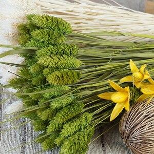 Image 3 - 1 Bunch (1 Bündel = 20 Pcs) natürliche Simulation Pflanzen Getrocknete Blumen Bouquets Für Home Dekoration Wohnzimmer Hochzeit