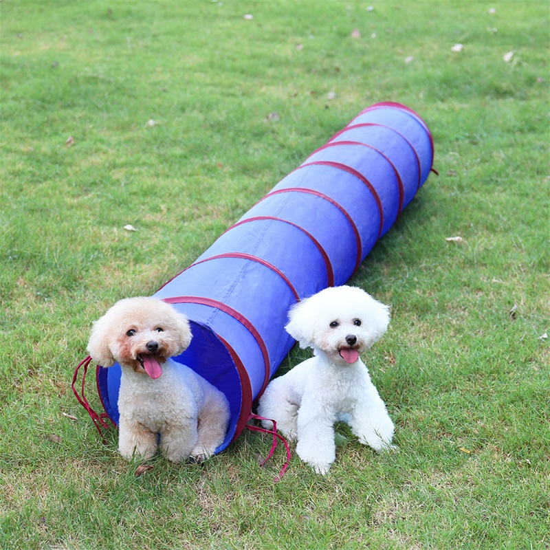 2M Long Cat Tunnel Funny Pet Cat Tunnel Dia 30cm Cat Play Tubes Collapsible Kitten Dog Toys Puppy Ferrets Rabbit Play Toys image