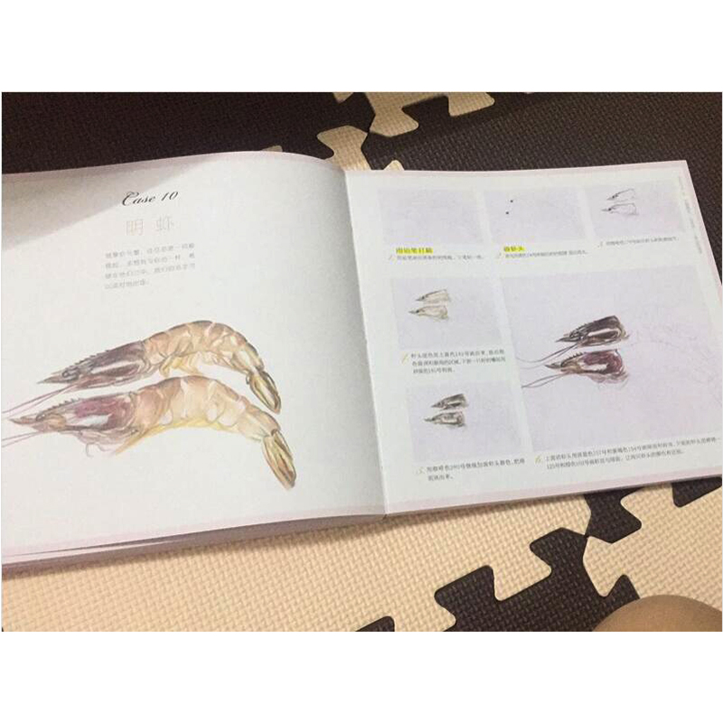 100 examples of drawing time to color pencils book
